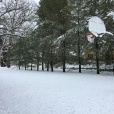 The outdoor basketball court saw no use over the snowy weekend.